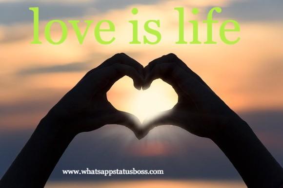 love-u-status