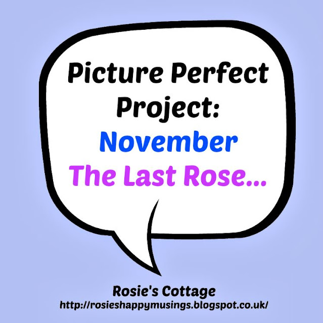 Picture Perfect Project: The Last Rose
