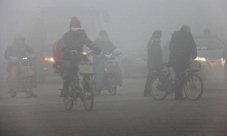 """地味だけどすごい""""コケ""""で街の空気を浄化する?【o】 ドイツのグリーン・シティ・ソリューションズ 緑の壁"""