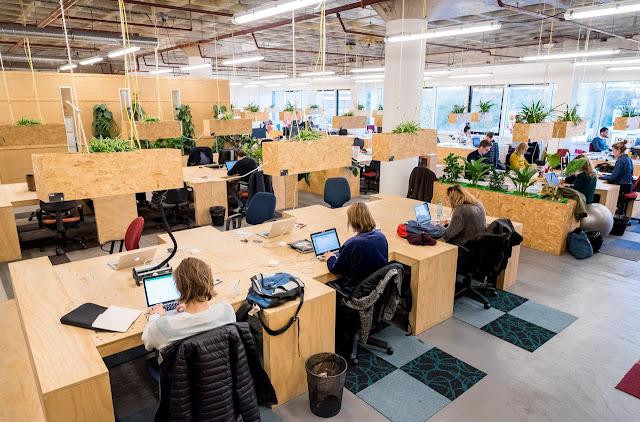 هولندا.. دعم العاملين المستقلين بما فيهم أصحاب الشركات الفردية  بسبب أزمة كورونا