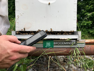 Broodminder Hive Scale
