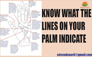 KNOW WHAT THE LINES ON YOUR PALM INDICATE