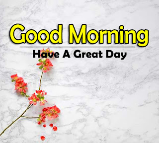 New Good Morning 4k Full HD Images Download For Daily%2B104