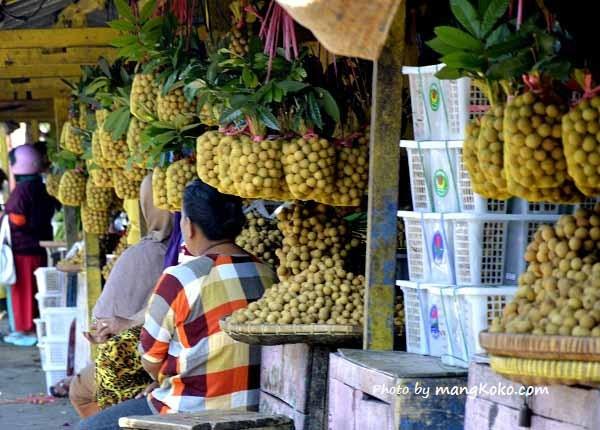 http://studiopelangi.com/article/184433/085640203369-jasa-company-profile-kudus-semarang-demak--company-profile-safety-brifing-rsu-kumala-siwi-kudus.html