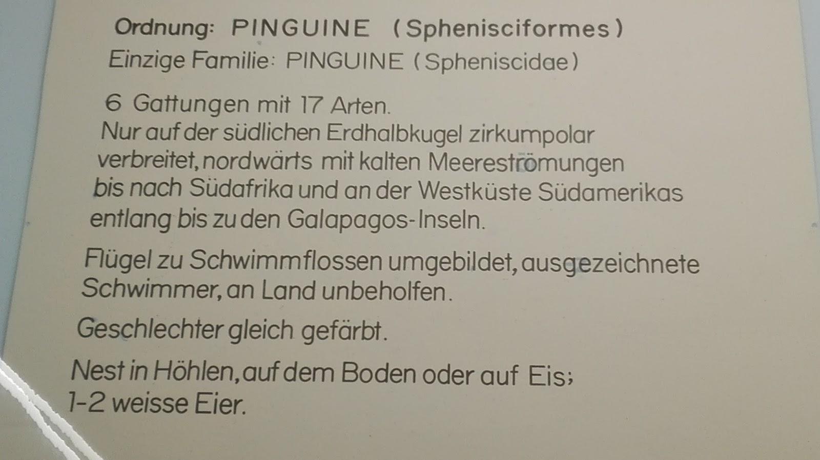 Charmant Aktualisierte Lebenslauf Beispiele Galerie ...