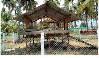 goat farming in Tamil Nadu, aadu valarpu, ஆடு வளர்ப்பு, ஆட்டு பண்ணை @tamilfarming