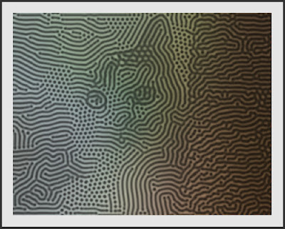 A Reaction-Diffusion pattern on an cat image.