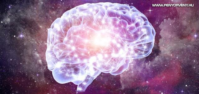 Hogyan is szűri az agyad a körülötted lévő dolgokat?