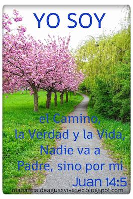 YO SOY EL CAMINO.... JUAN 14:6