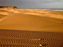 FaktaTentang Gurun sahara