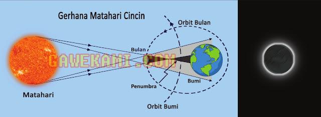 Gerhana Matahari Cincin Kelas 6 Tema 8