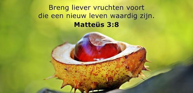 Breng liever vruchten voort die een nieuw leven waardig zijn.
