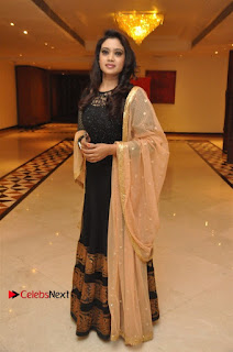 South Indian Celebrities Pos at Love For Handloom Collection Fashion Show  0103.jpg