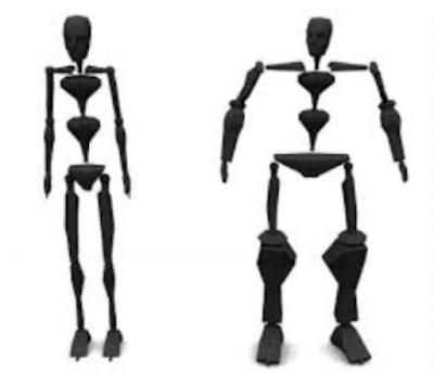 model sederhana otot manusia www.simplenews.me