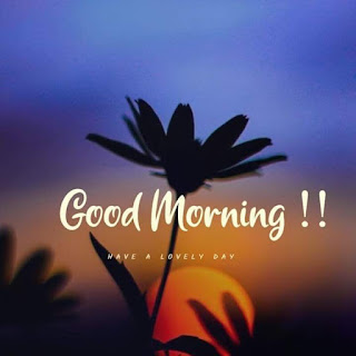 Beautiful Good Morning Images 2020 Good Morning Best Wishes Pictures 2020 Latest Good Morning Pics of 2020
