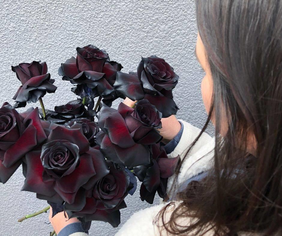 gambar mawar hitam cewek