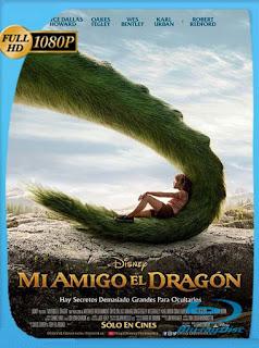 Mi amigo el dragón (2016) HD [1080p] Latino [GoogleDrive] DizonHD