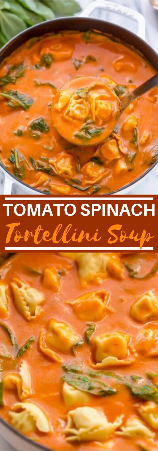 Tomato Tortellini Soup #dinner #soup #recipes #vegetarian #comfortfood