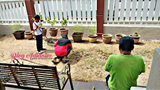 Kawalan Pergerakan | Gotong-royong bersihkan halaman rumah