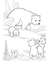 דף צביעה דובים