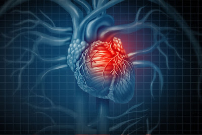 Forced Expiratory Volume In One Second or FEV1 Predicts Progression of Chronic Heart Failure