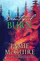 http://lachroniquedespassions.blogspot.fr/2016/12/les-freres-maddox-tome-4-beautiful-burn.html
