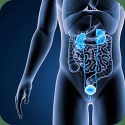Exame de imagem melhora detecção de câncer de próstata