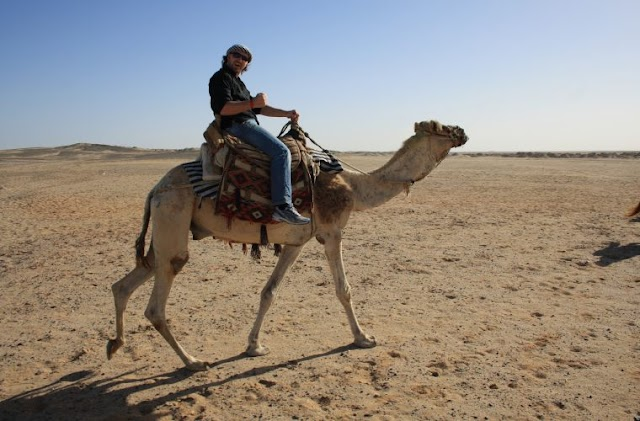 What you need to know about riding a camel in Qatar