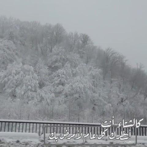 ( كالشتاء أنت أنتظرك كل عام لأمرض بك )  Like winter, I wait for you every year to get sick