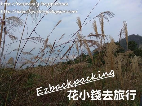 香港芒草:鹿頸谷埔行山看芒草