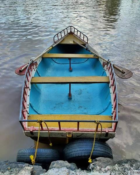 Blue Bord