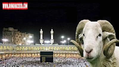 تهنئة عيد الاضحى 2021 عيد اضحى مبارك