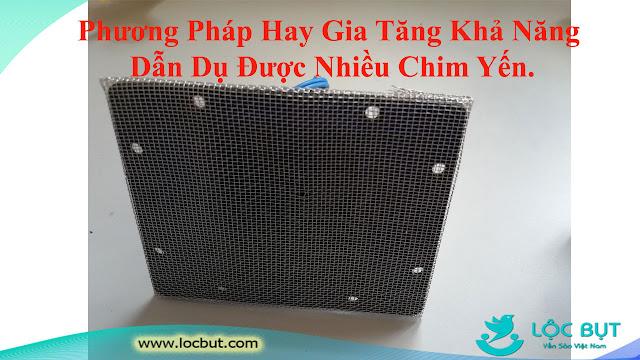 Giải Pháp Lần Đầu Tiên Áp Dụng Tại Việt Nam - Lắp Lưới Vào Loa Dẫn Dụ Chim Yến.