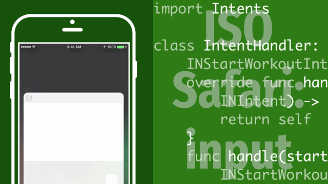 ISO Safari input sorunu