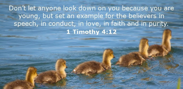 Don't let anyone look down on you because you are young, but set an example for the believers in speech, in conduct, in love, in faith and in purity.