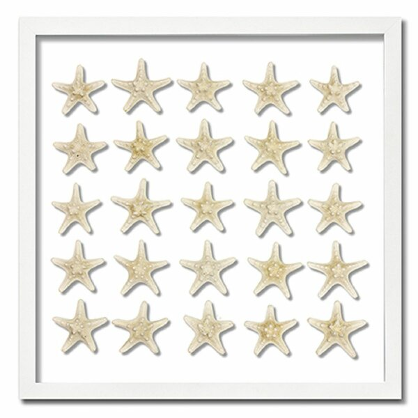 Starfish Frame Only Wall Decor