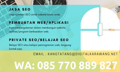 Konsultan internet marketing