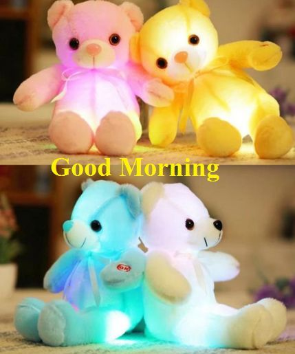 Good Morning Teddy Bear Images For Whatsapp