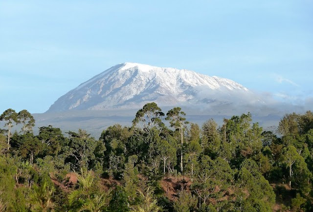 10 Mount Kilimanjaro Facts For People Who Are Interested In Africa