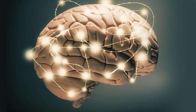 Tăng cường trí nhớ với sản phẩm Đông Y