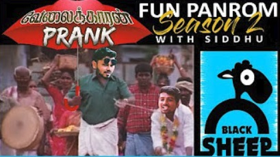 Velaikaran Prank | Fun Panrom with Siddhu | Black Sheep