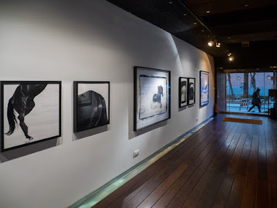 Blog ExpoPhoto de Koldo Badillo