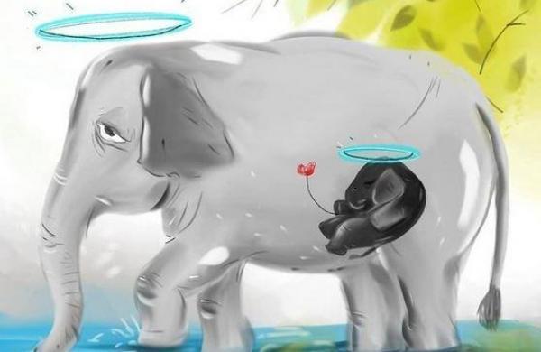 Heartbreaking News: One More pregnant Elephant's Brutal 'murder' in Kerala