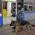 Abaten en Rusia a terroristas del Estado Islámico que planeaban atentar en Nochevieja