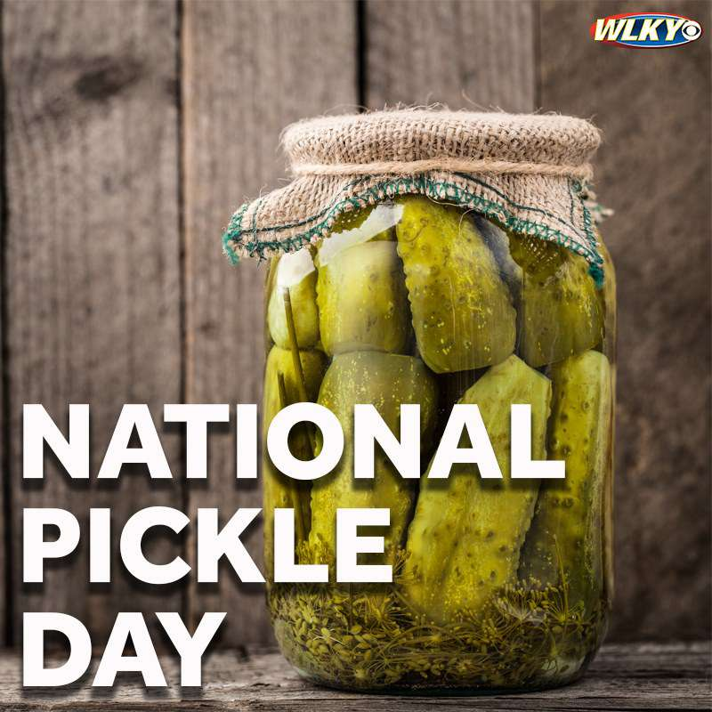 National Pickle Day Wishes for Instagram