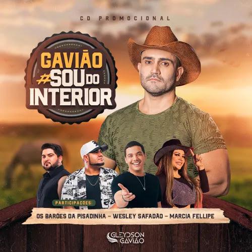 Gleydson Gavião - ou do Interior - Promocional de Novembro - 2020