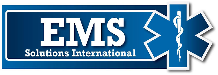 EMS Solution International