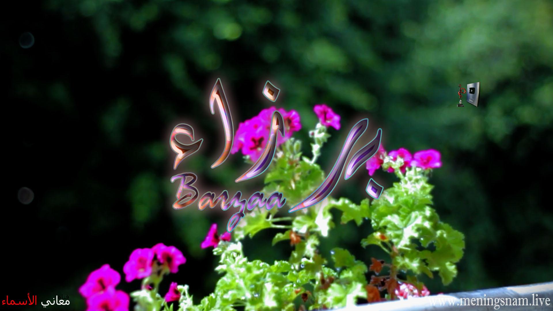 معنى اسم برزاء وصفات حاملة هذا الاسم Barzaa