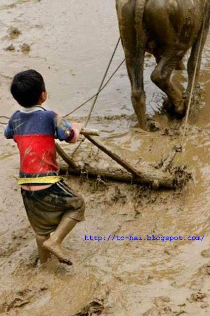 http://1.bp.blogspot.com/-yNgo3A_GUxo/U4mlQJ6GZAI/AAAAAAAABDA/md3y2ZfP_mo/s1600/1_nh+em+bé+_i+c_y.jpg