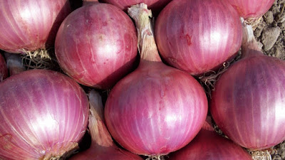 Benefits of onion,onions health benefits,onion images,onion pictures,
